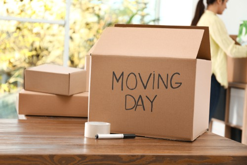 Moving day faqs picture